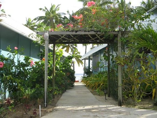 Sunhaven Beach Bungalows : Gardens line the bungalows