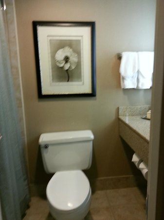 Hilton Washington DC North Gaithersburg: Bathroom for King Room