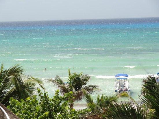 Playa Palms Beach Hotel: View from my hammock