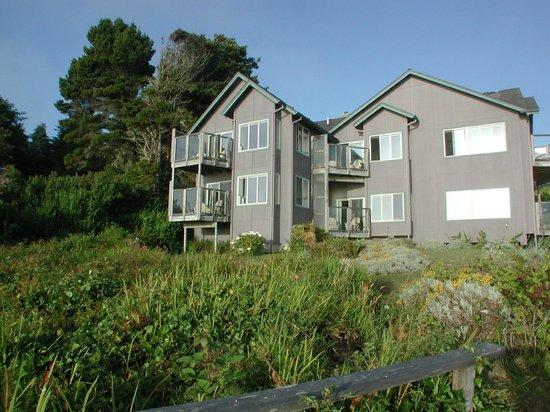 Turtle Rocks Inn: Oceanside view of inn from edge of property