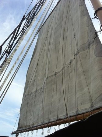 Manhattan By Sail - Clipper City Tall Ship: and the sails are up!