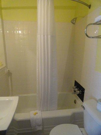 Ellijay Inn : bathroom