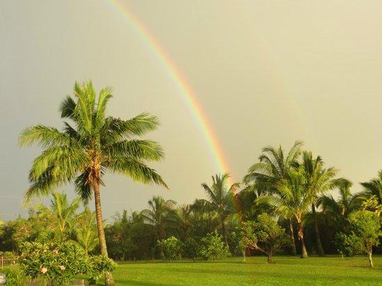 Maui Ocean Breezes: An everyday scene in Haiku
