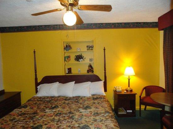 Ellijay Inn : King Size room