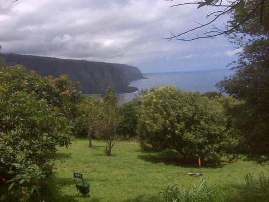 Hale Kukui: Orchard view toward Waipio Valley, the black sand beach and Maui
