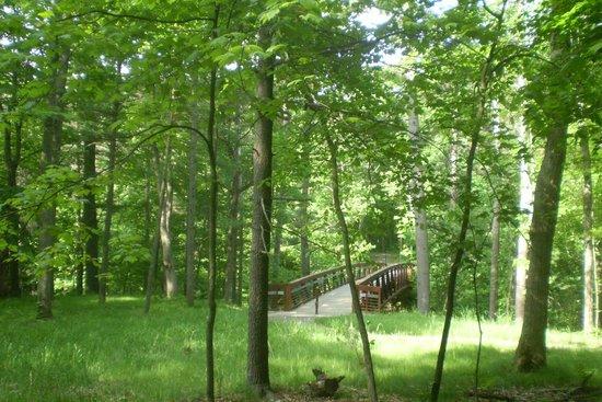 Mirror Lake State Park: Bridge off of Echo Rock Trail