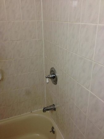 Days Inn Elmsford: bathroom, dirty grout, caulk missing, toilet seat worn & loose