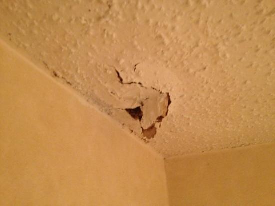 Regency Inn : 1 of several holes in the ceiling