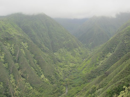 Waihee Canyon: Sweeping valley view approx 1/2 way