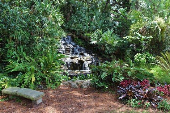 Ormond Memorial Art Museum: Waterfall