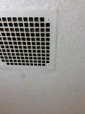 Days Inn Elmsford: filthy bathroom vent and mold? covering ceiling.