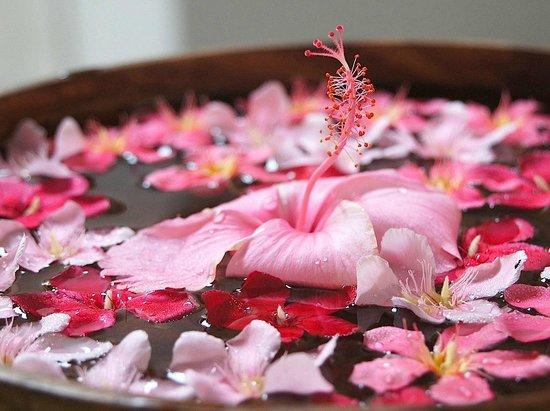 Niyagama House: Tropical Flower Decoration