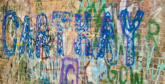 Charlie Major Nature Trail: Graffiti