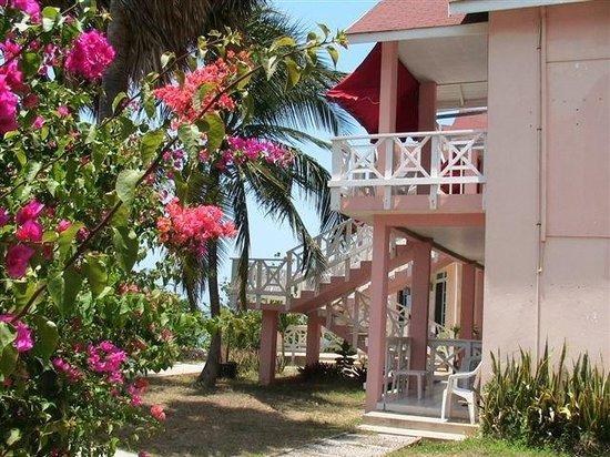Treasure Beach Hotel: TBH