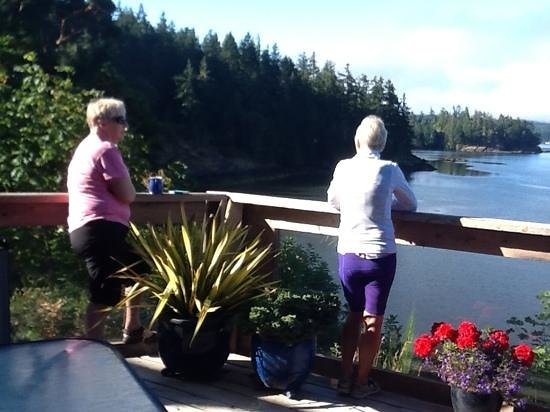 Arbutus Cove Guesthouse: enjoying the view