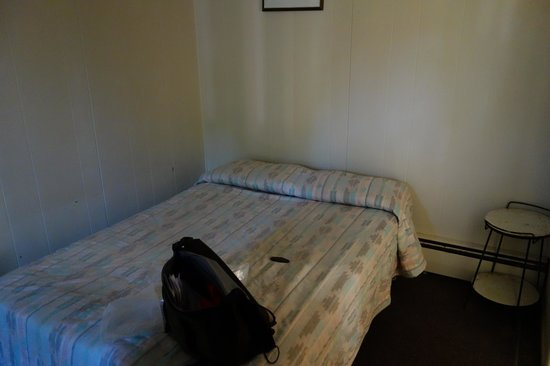 Redwood Motel: The lovely decor....