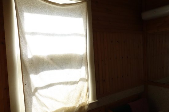 Redwood Motel: Fancy curtains....there goes half the towel supply!
