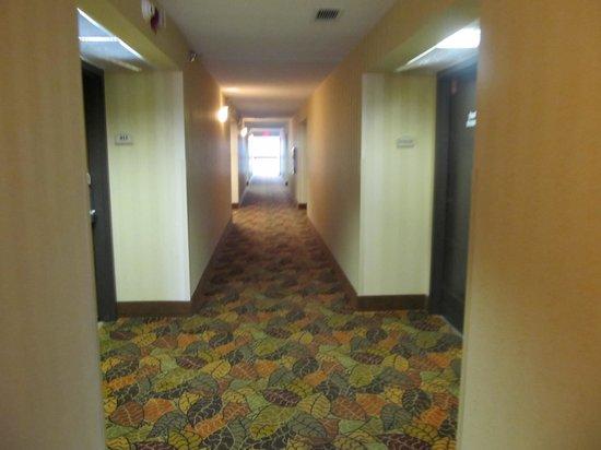 Ramada Indianapolis Airport: hall