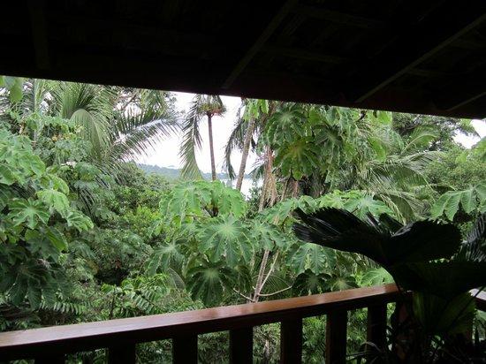 Hotel Costa Verde: View from deck (raining)