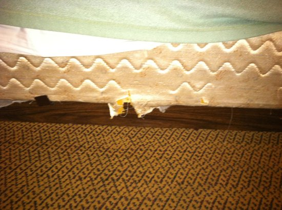 Travelodge Turlock: Ripped up bed