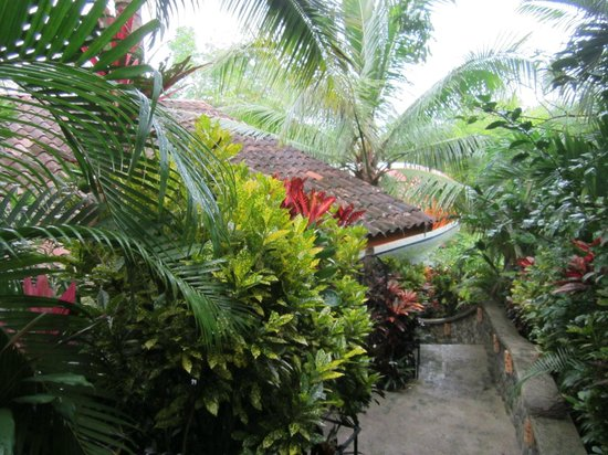 Hotel Costa Verde: Approach to 727 room