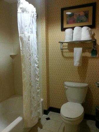 Homewood Suites Rockville - Gaithersburg: Bathroom