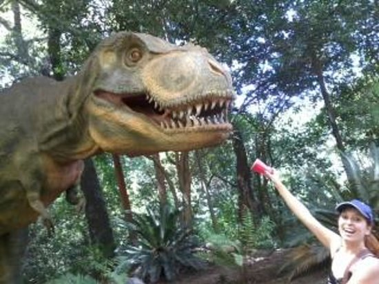 Bioparque Estrella: Creo que a esos dinosaurios no les gustaba ese alimento :S
