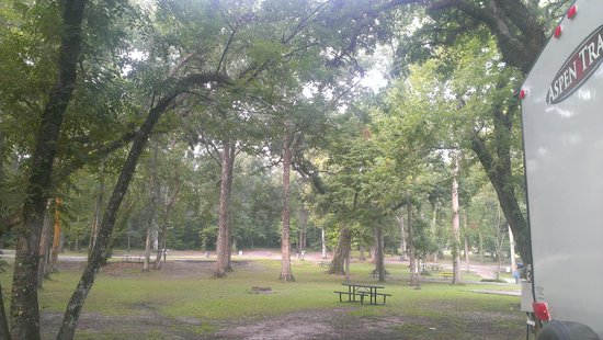 Acadiana Park Campground: Lots of open space. Beauty in every direction.