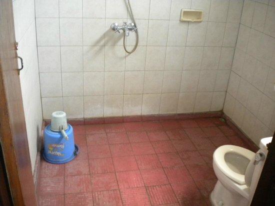 Kunang-Kunang Guesthouse: shower and western toilet