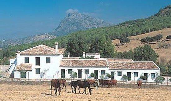 Ronda Hotel El Horcajo