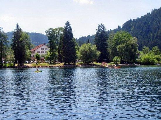 La Fourchette Gourmande : établissement vue du lac
