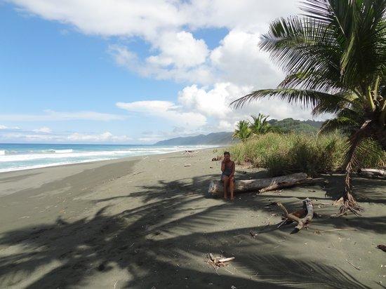 LagunaVista Villas: Morning spent on the busy beach!