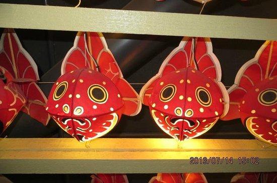 Tsugaruhan Neputa Mura: 津軽錦をモデルにした金魚ねぶた