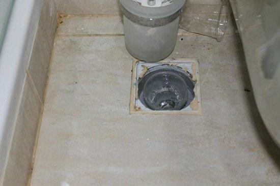 3 keer op 1 week kakkerlak in appartement - Bild von Sunhill Hotel ...
