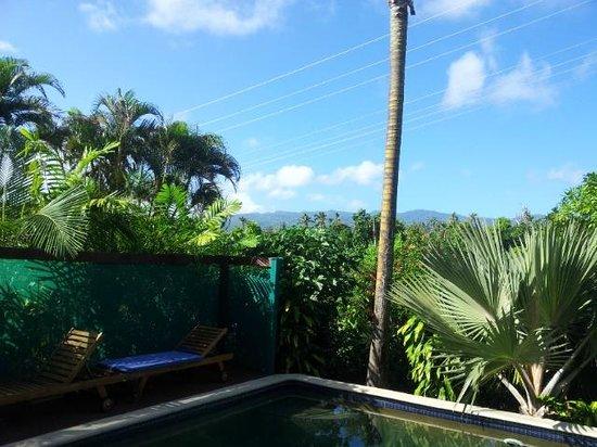 Lynn's Getaway Hotel: View of the pool