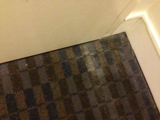 Novotel Melbourne St Kilda: room not cleaned, not vacuumed