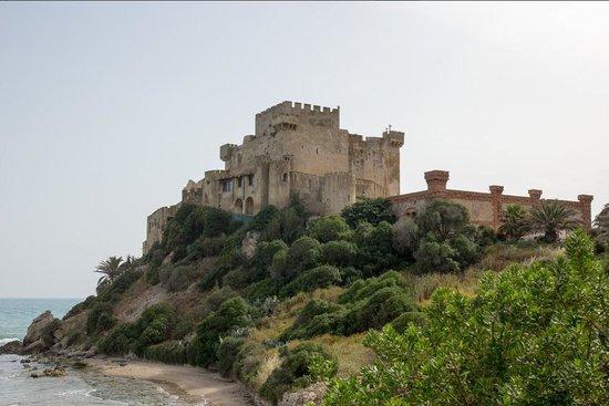 Falconara Charming House Resort & SPA : Falconara Castle