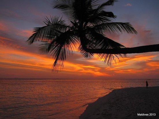 Biyaadhoo Island: Biyadhoo island 02