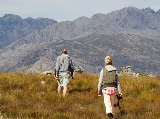 People Like Us Safaris - Day Tours: Hike the Cape Fold Mountains that encompass the Cape