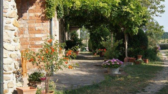 Agriturismo Sant'Emilia: Sant Emilia