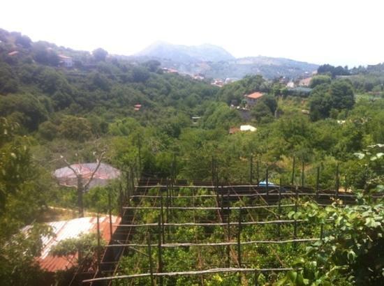 De Maria House B&B : Beautiful mountains view