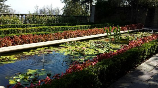Ballister Fencing Also Surrounds Koi And Water Lily Pond