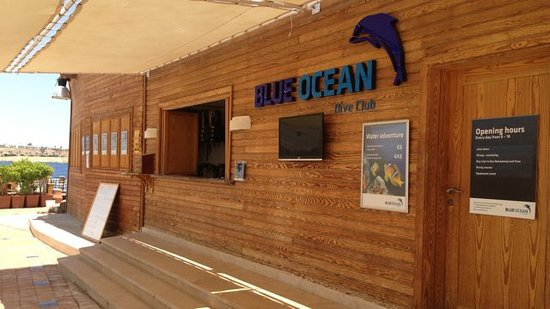 ‪Blue Ocean Dive Club‬