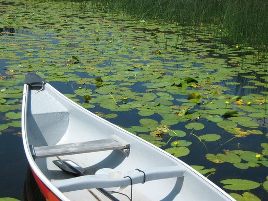 Siwash Lake Wilderness Resort: Canoe on the Lake