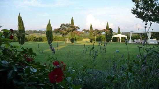Fattoria Isola: Pool- bzw. Gartenanlage