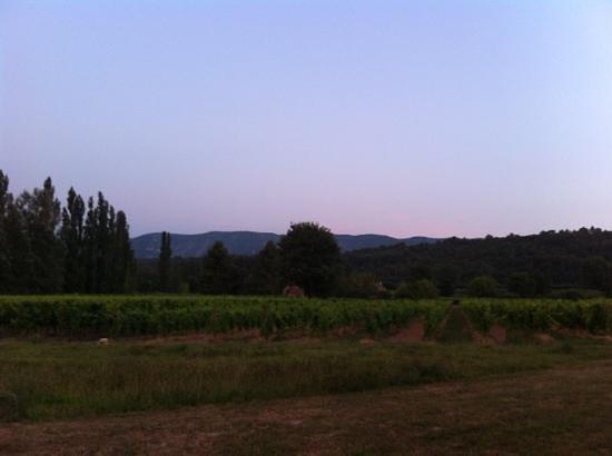 Menerbes, Frankrike: Vue sur le Luberon et les vignes du domaine