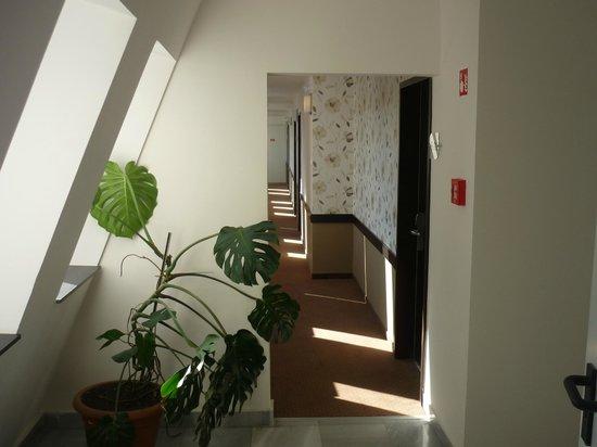 Medosz Hotel: The Hotel corridor