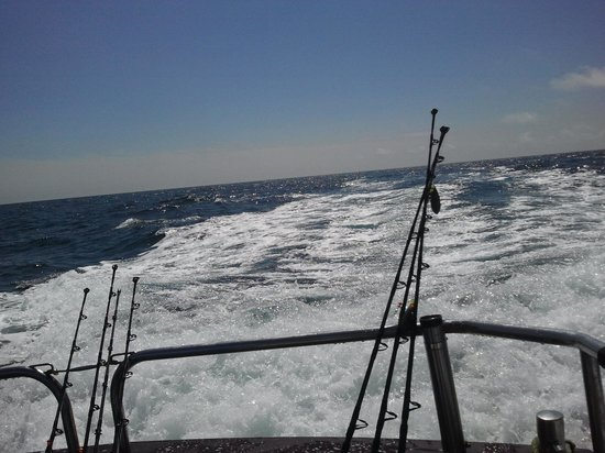 Viking Charters: fishing trip on the viking