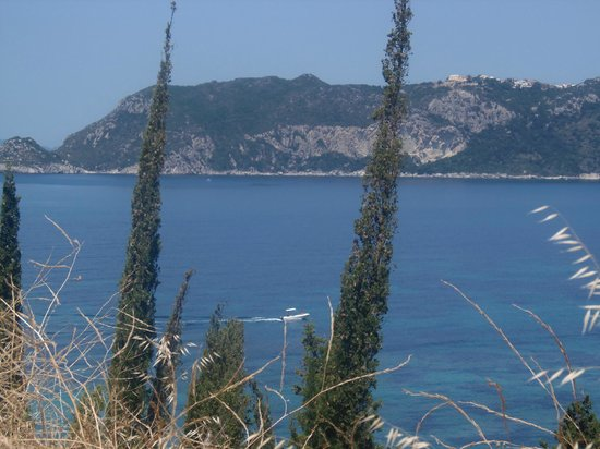 Hotel Costas Golden Beach: From the olive groves