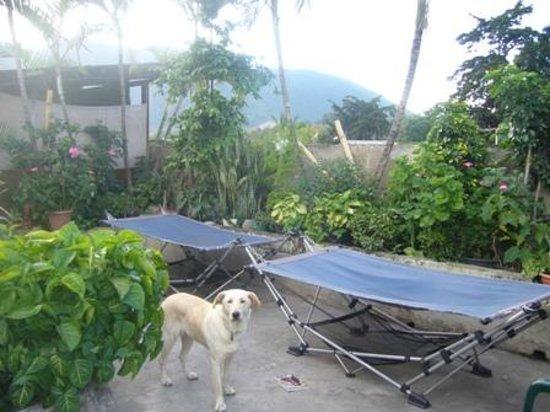 Posada Juma Ocag: The roof